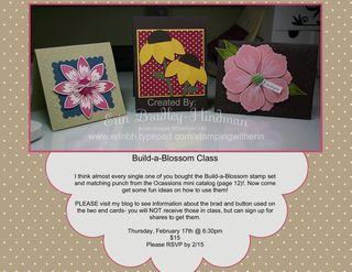 Buildablossomclass1-001