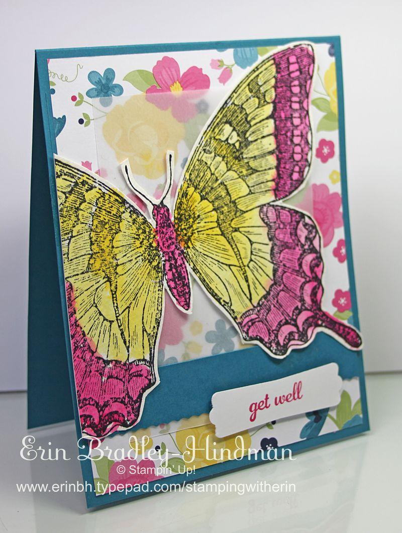 Pinkyellowbutterfly